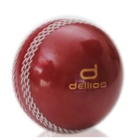 PD026 ; Dellios POLY Cricket ball, Official size, Red